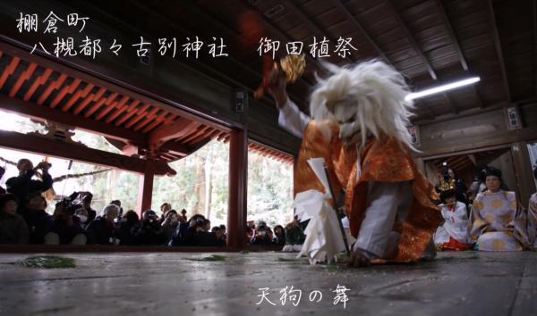 『『八槻都々古別神社御田植祭天狗の舞』の画像』の画像