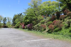 『亀ヶ城公園4_26_2』の画像