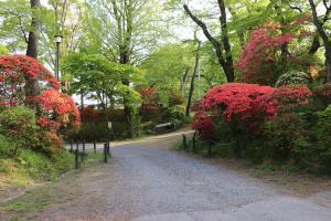 『亀ヶ城公園5_01(1)』の画像