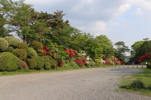 『亀ヶ城公園5_01(2)』の画像
