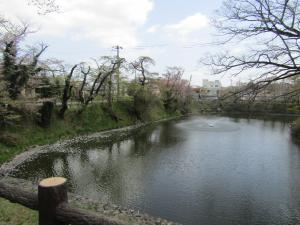 『城跡北(2)4月22日』の画像